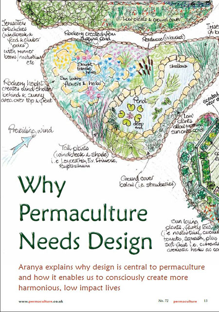Why permaculture needs design